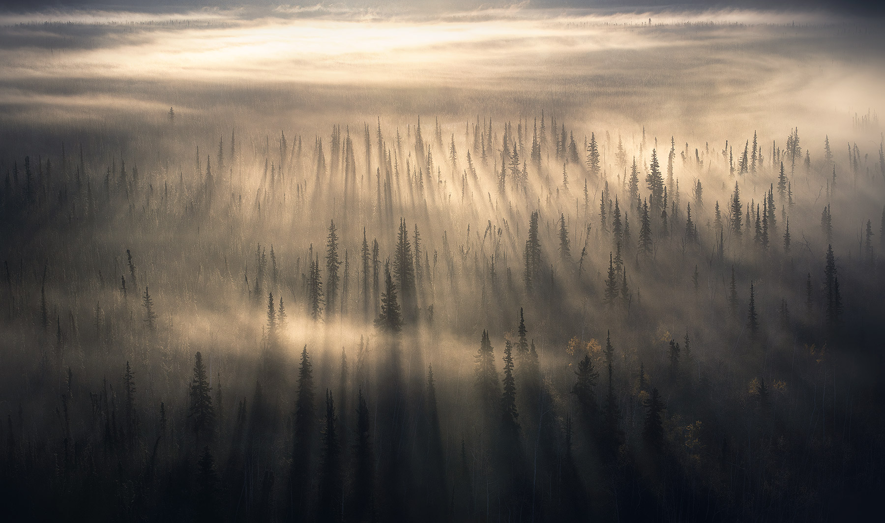 Yukon, boreal, beams, sunbeam, fog beam, fog, photo