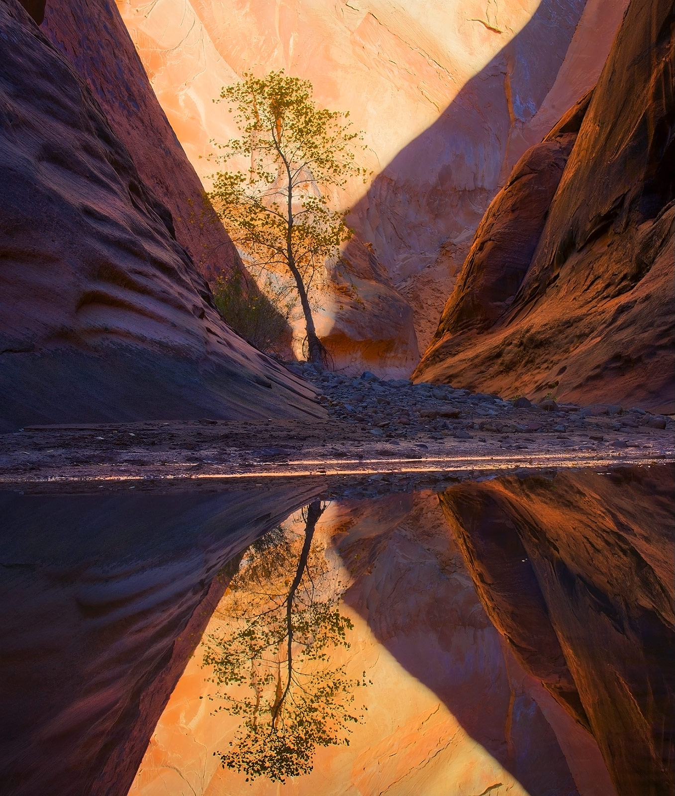 Capitol Reef, Halls Creek, Narrows, Utah, photo