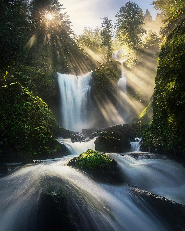 Sun beams, beams, light, rays, waterfall, rainforest, green, spring, Washington, cascades, falls creek, photo