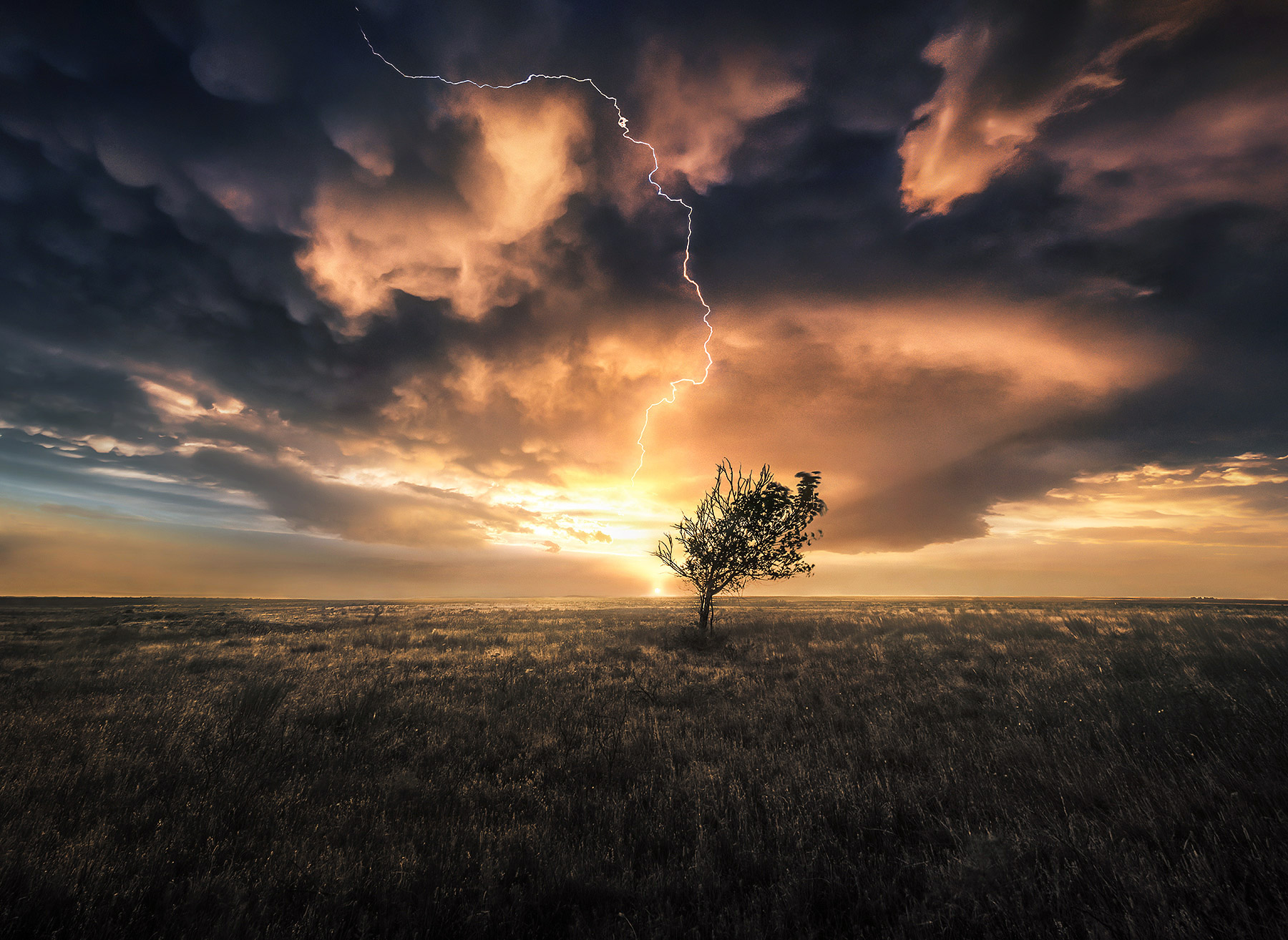texas, lone tree, storm, lightning, thunderstorm, mammatus, photo