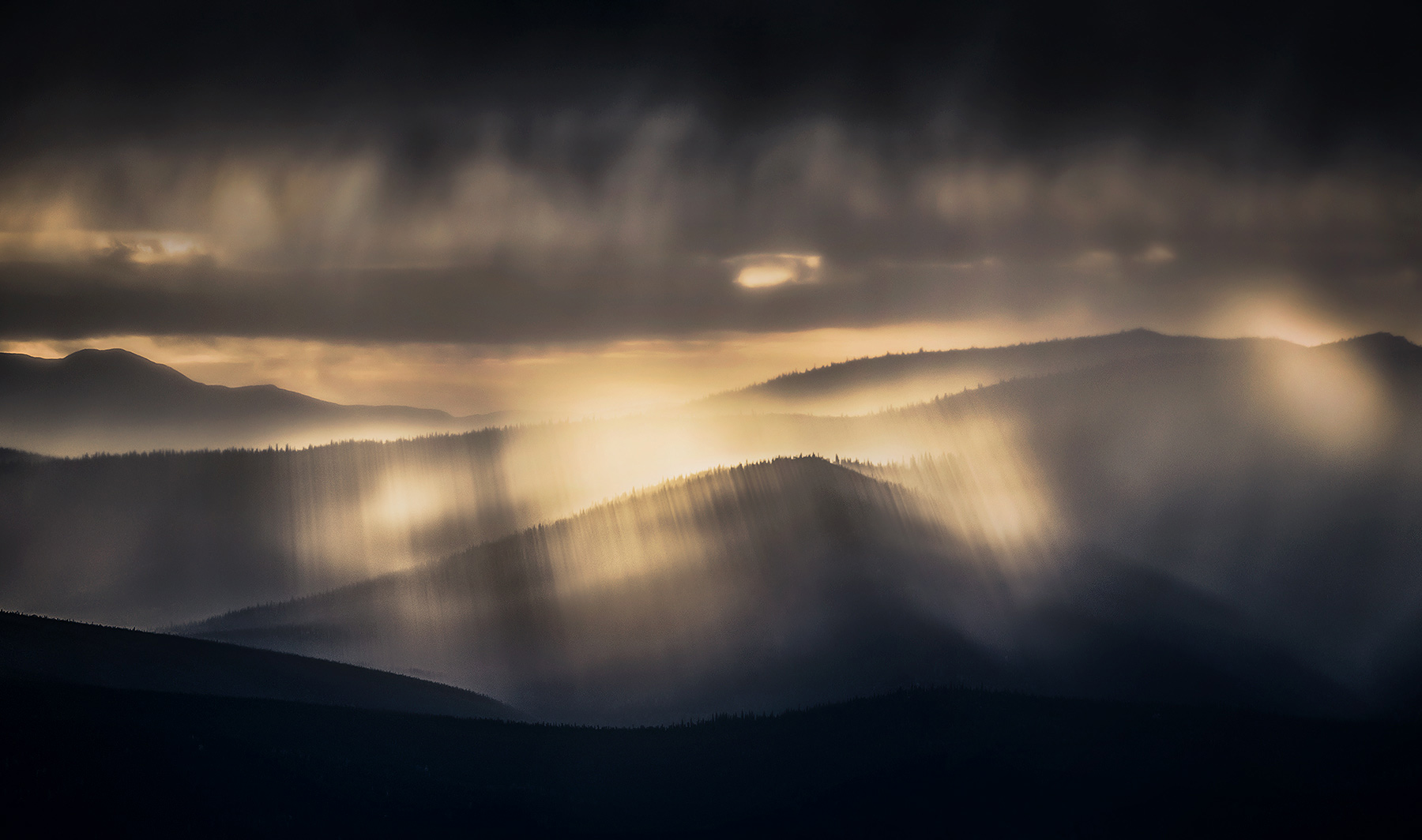 sky, light, peaceful, beams, god, Yukon, boreal, forest, photo