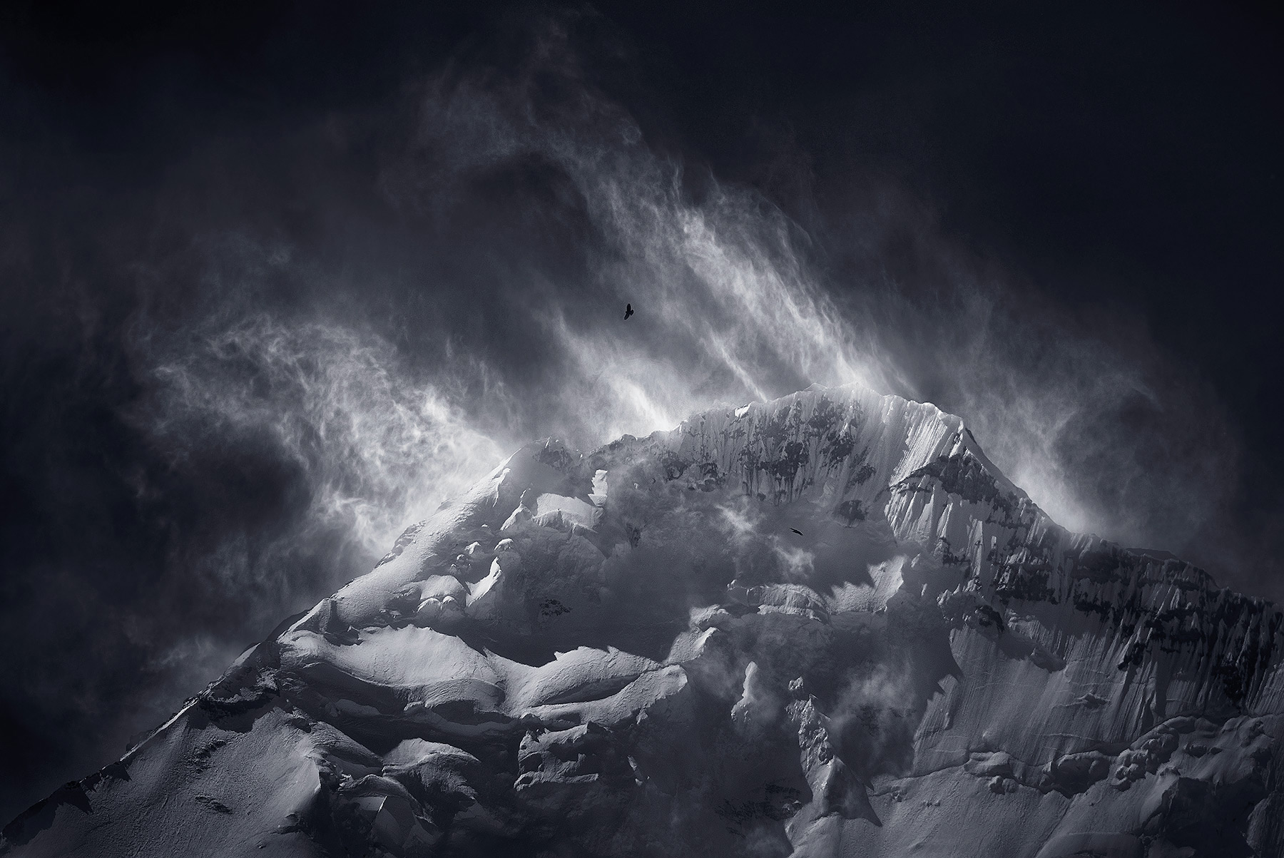 Birds, Everest, Tibet, Kangshung, Himalaya, Snow, cold, photo