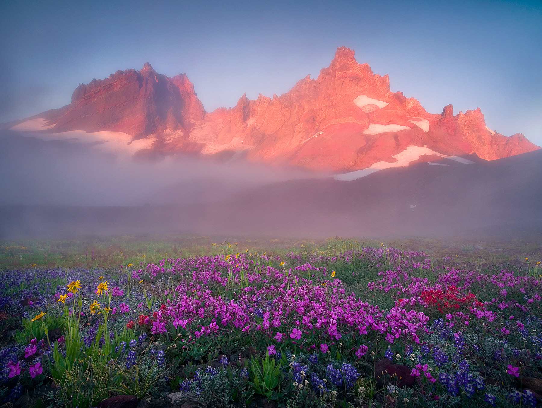 colorful, wildflowers, dramatic, misty, three sisters, sunrise, photo