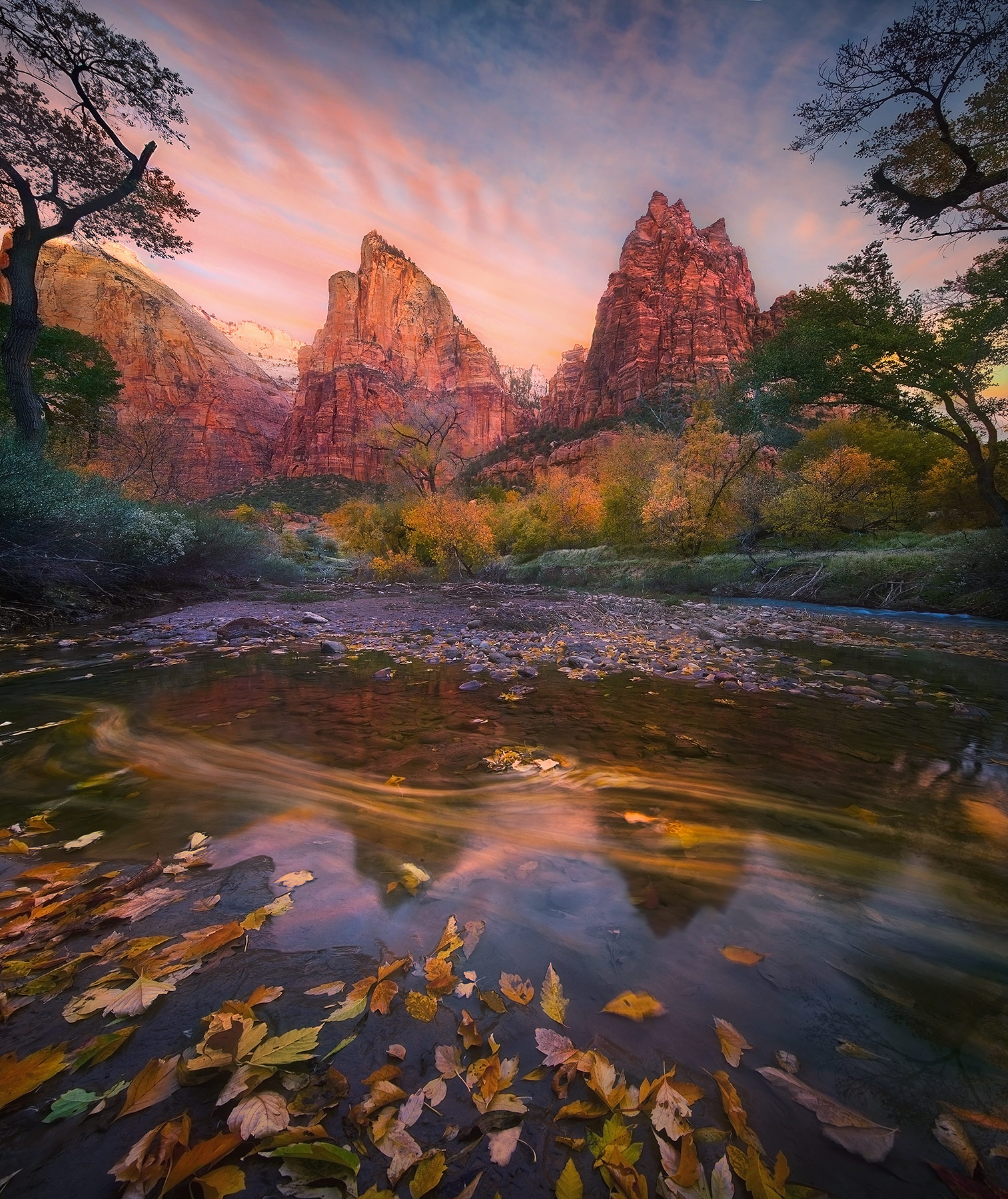 A rich blend of Autumn colors and sunrise glow in Zion National Park, Utah. Leaves streak by across the water below.