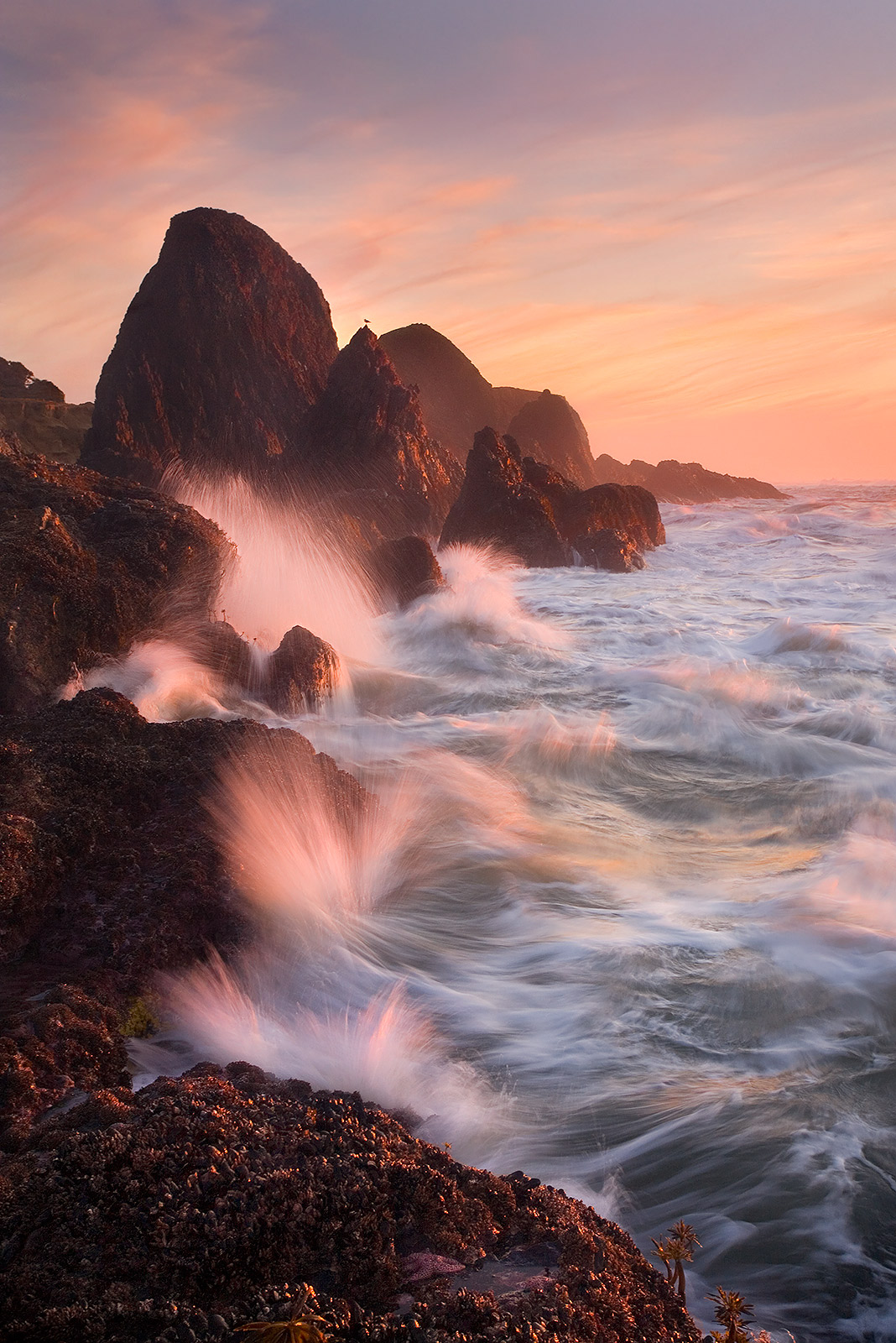waves, rocks, sunset, oregon, coast, photo