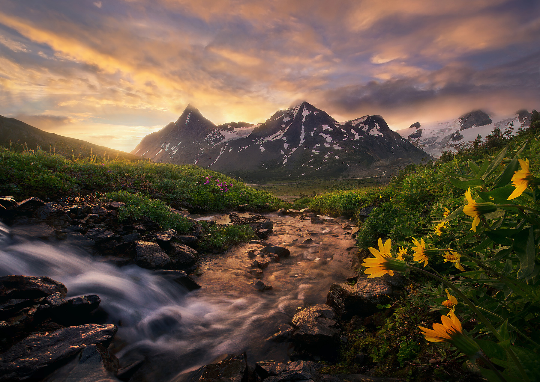 Sunrise, morning, boundary range, meadows, alaska, british columbia, Summer, photo