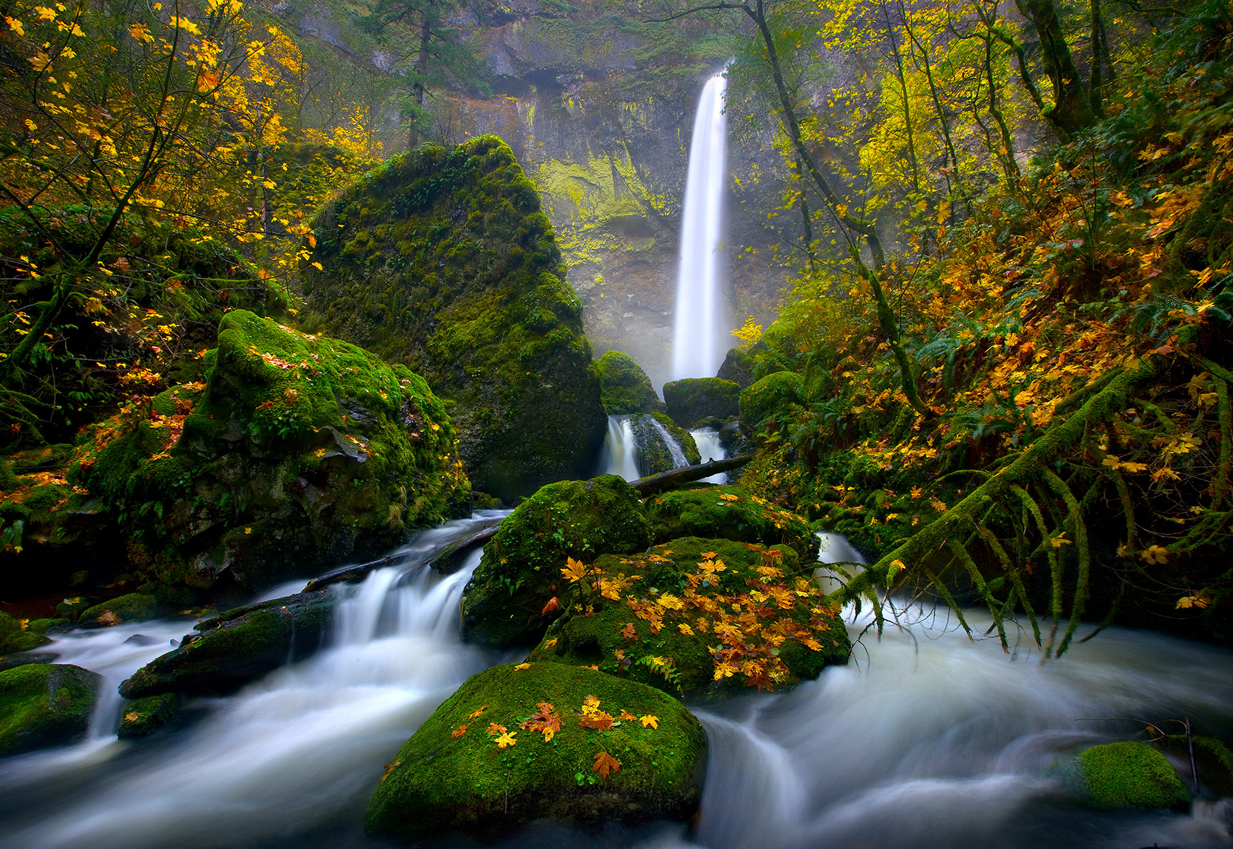 Oregon, Elowah, Falls, Waterfall, Rain, Fall, photo