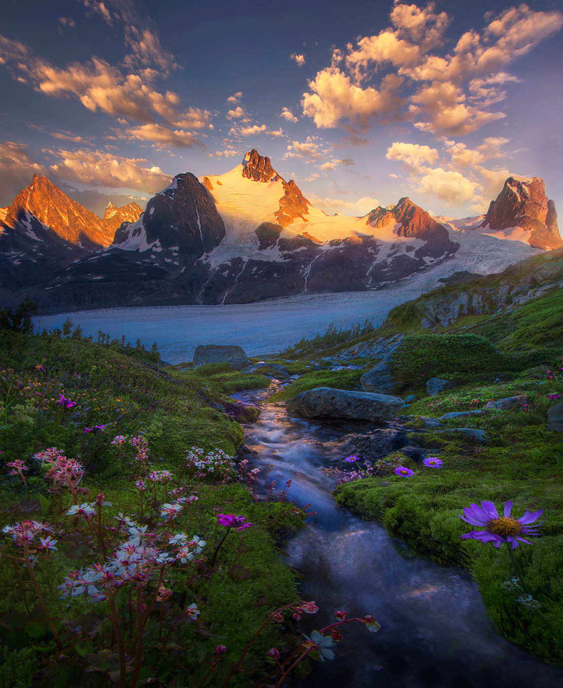 Glacier, mountains, summer, sunset, wildflowers, cascades, british columbia, alaska, photo