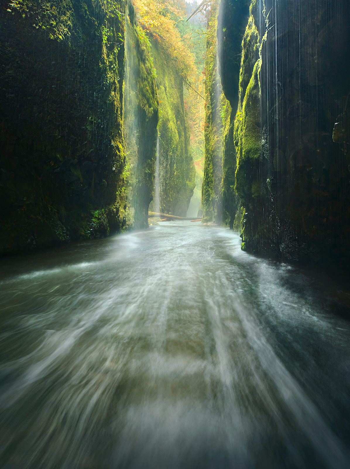 Oneonta Gorge in Oregon's Columbia Gorge is usually a wet place, but on this day it was pouring and had been for nearly three...