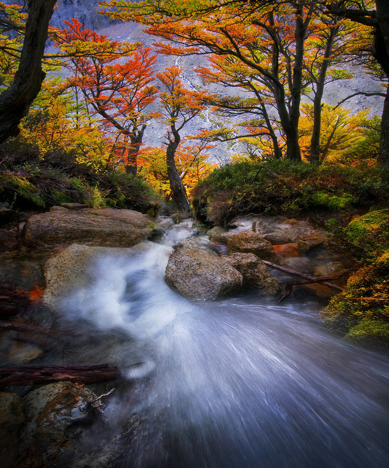 Argentina, Patagonia, Autumn, cascade, photo