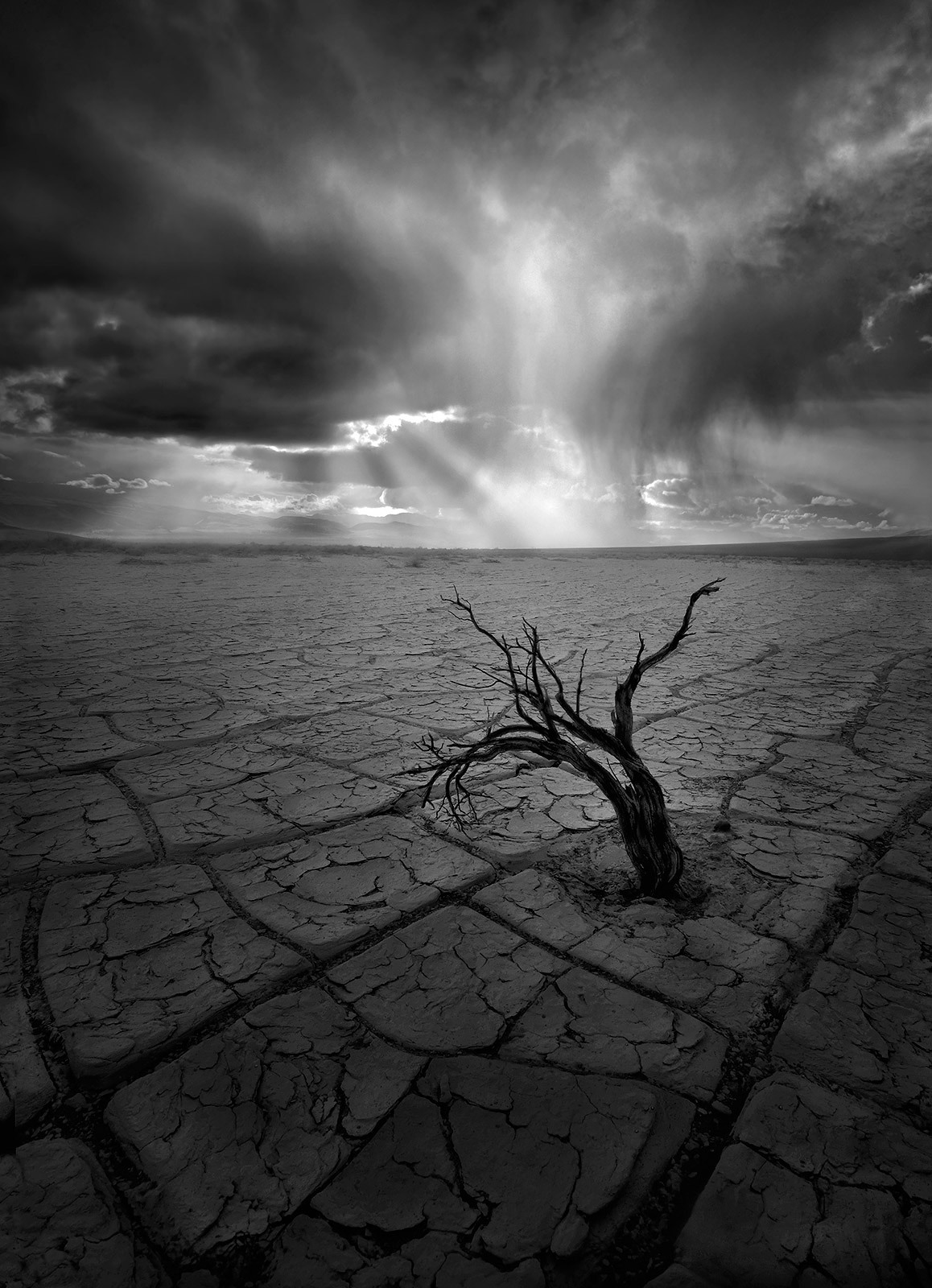 rainstorm, powerful, playa, desert, death valley, sagebrush, photo