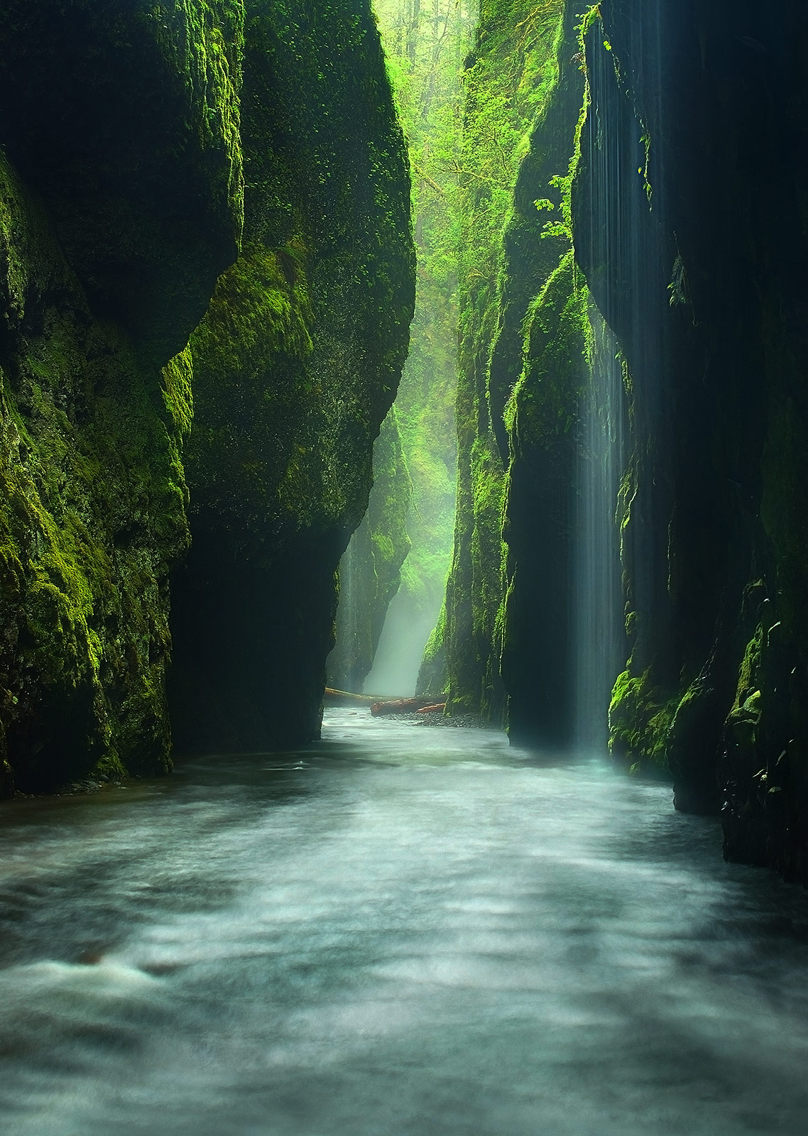 Heavy rains provide the misty atmosphere and waterfalls here in Oregon's Rain Forest canyon, Oneonta Gorge.