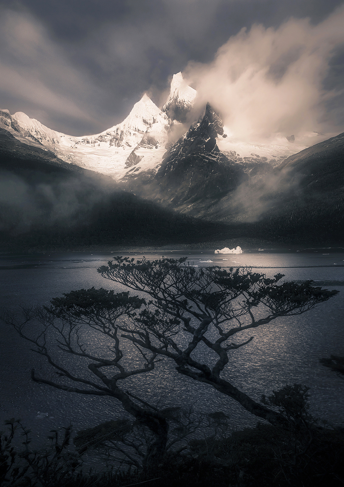 peaks, Chile, fiords, rainforest, Patagonia, iceberg, photo