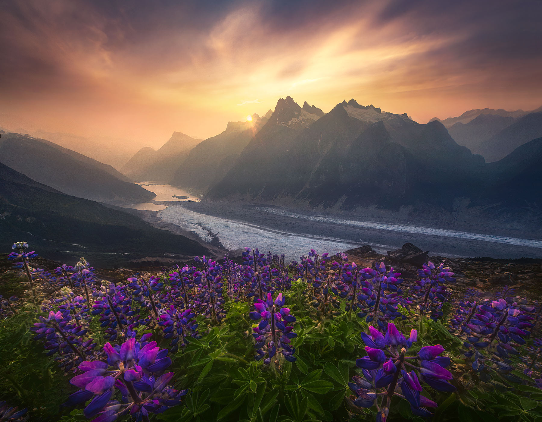 One of the endless views of high peaks, glaciers and wildflowers one can find in the Boundary Ranges of Alaska. Here the summer...