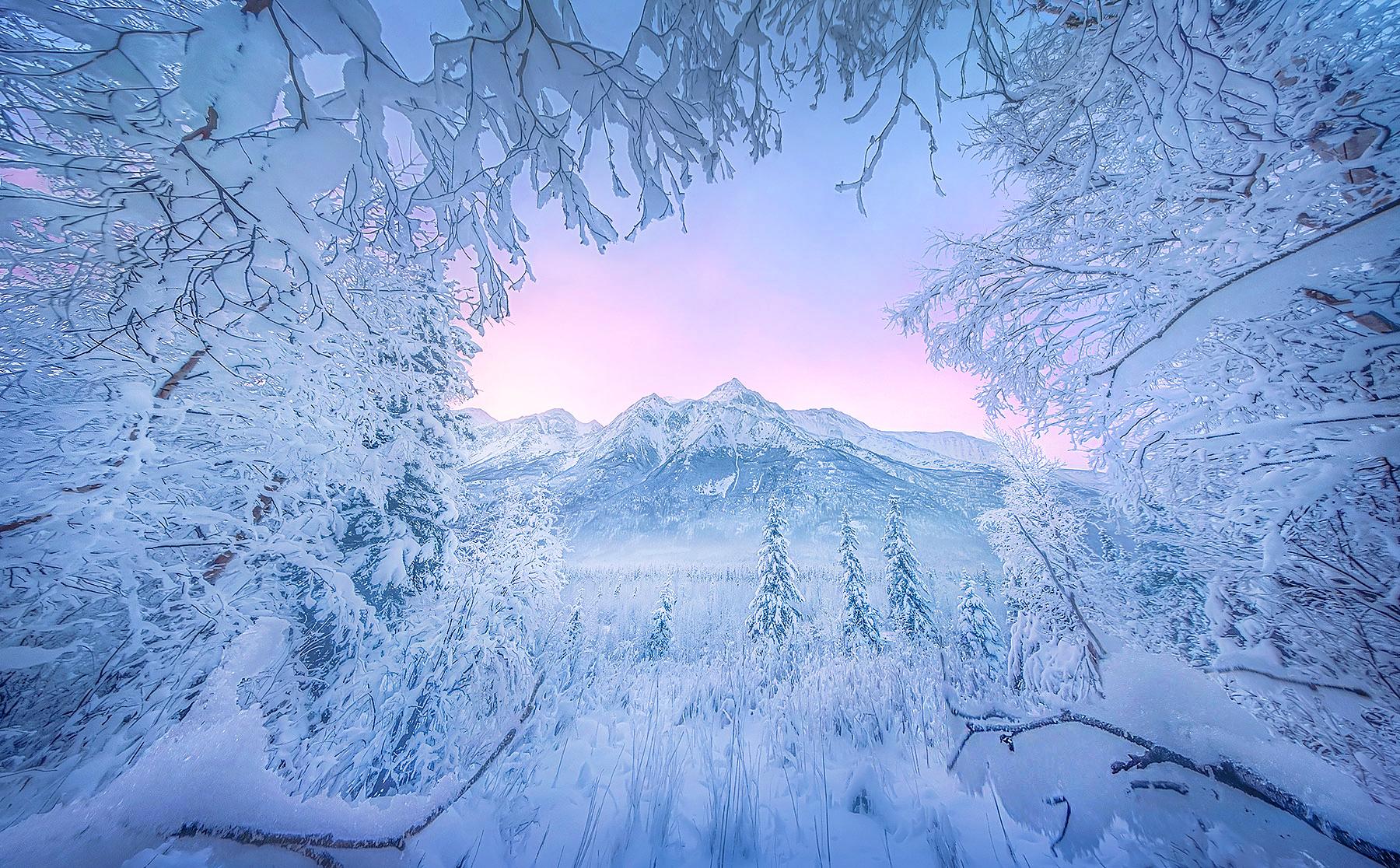 Seasons greetings from Alaska.