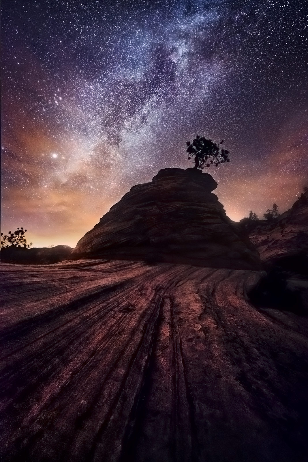 Zion, Checkerboard, Milky Way, Tree, Lone, Night, Surreal, photo