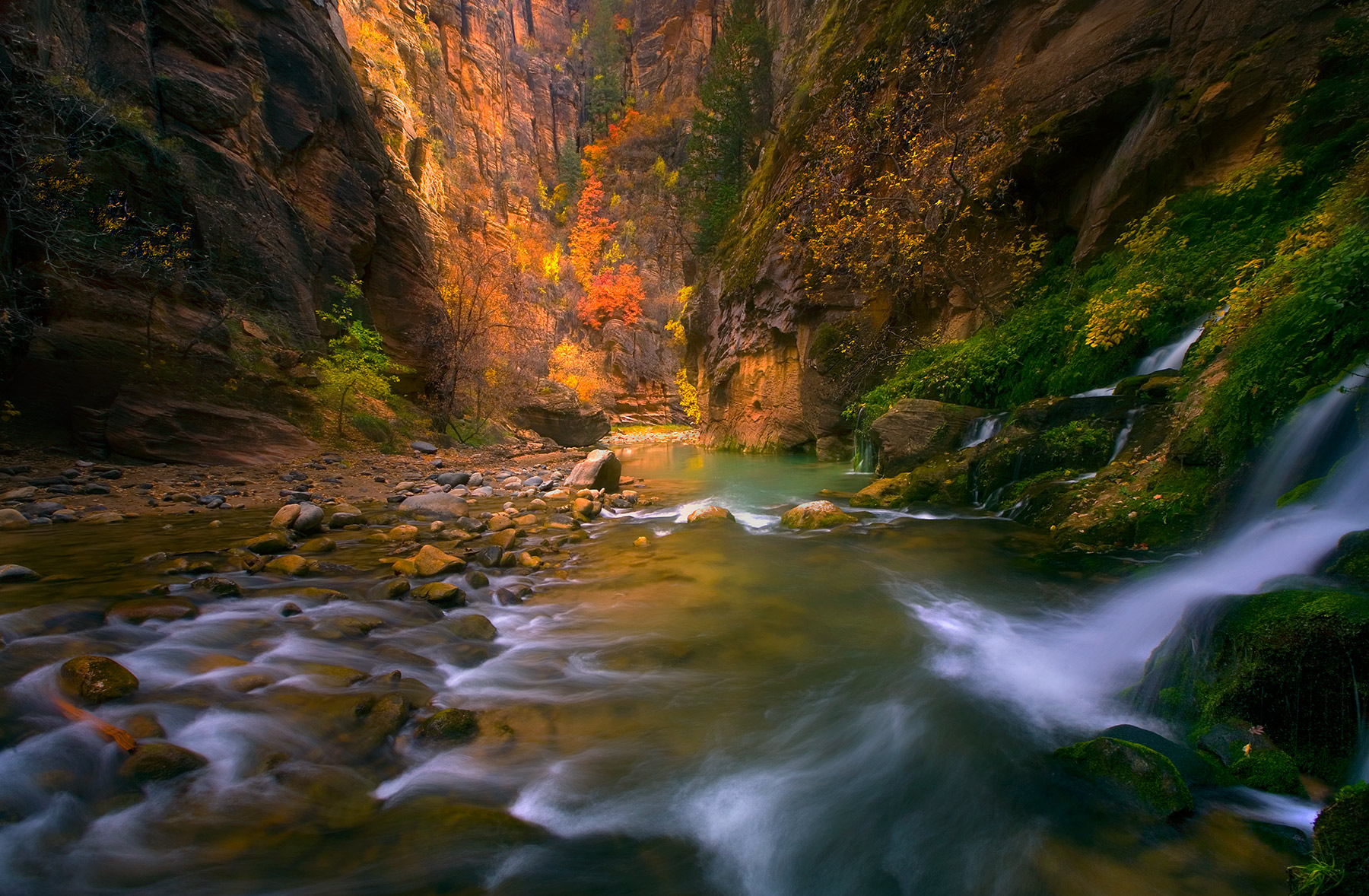 backpacking, zion, virgin, big spring, autumn, photo