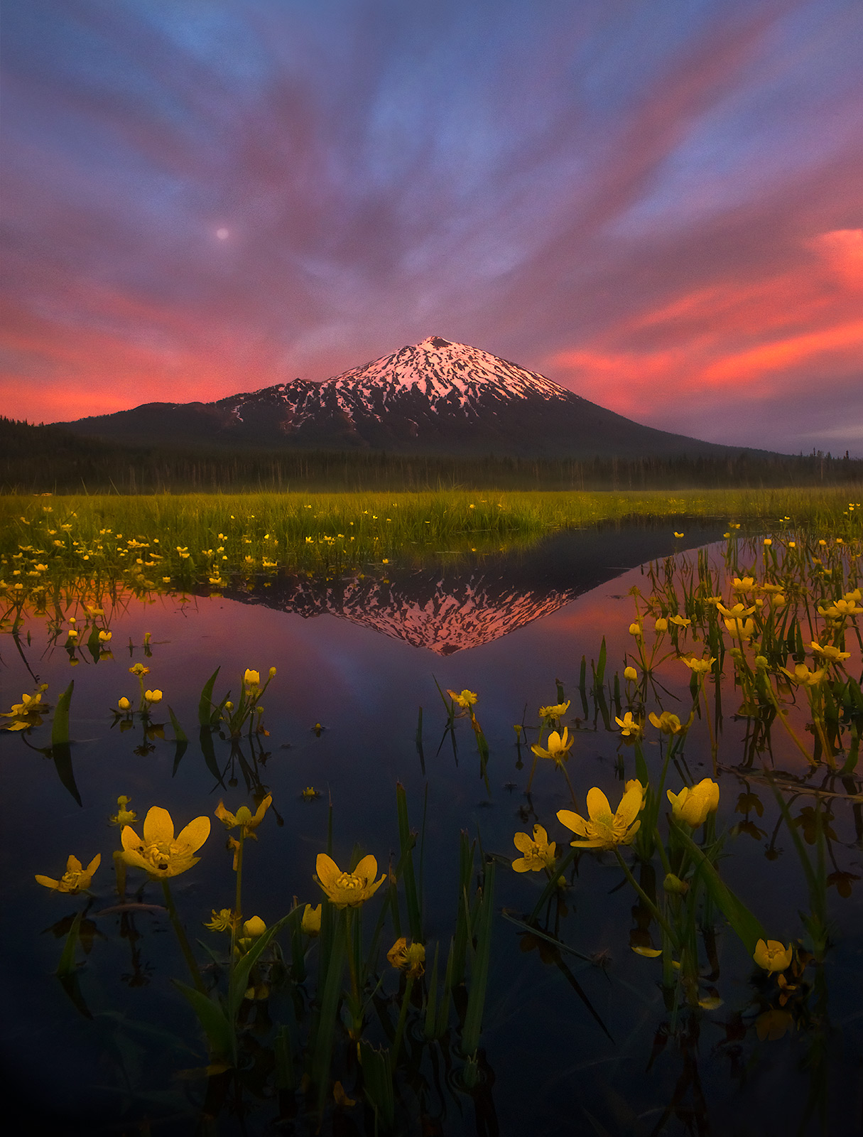 The rich colors of twilight as the moon rises over a wetland spring towards mount Bachelor, Oregon.