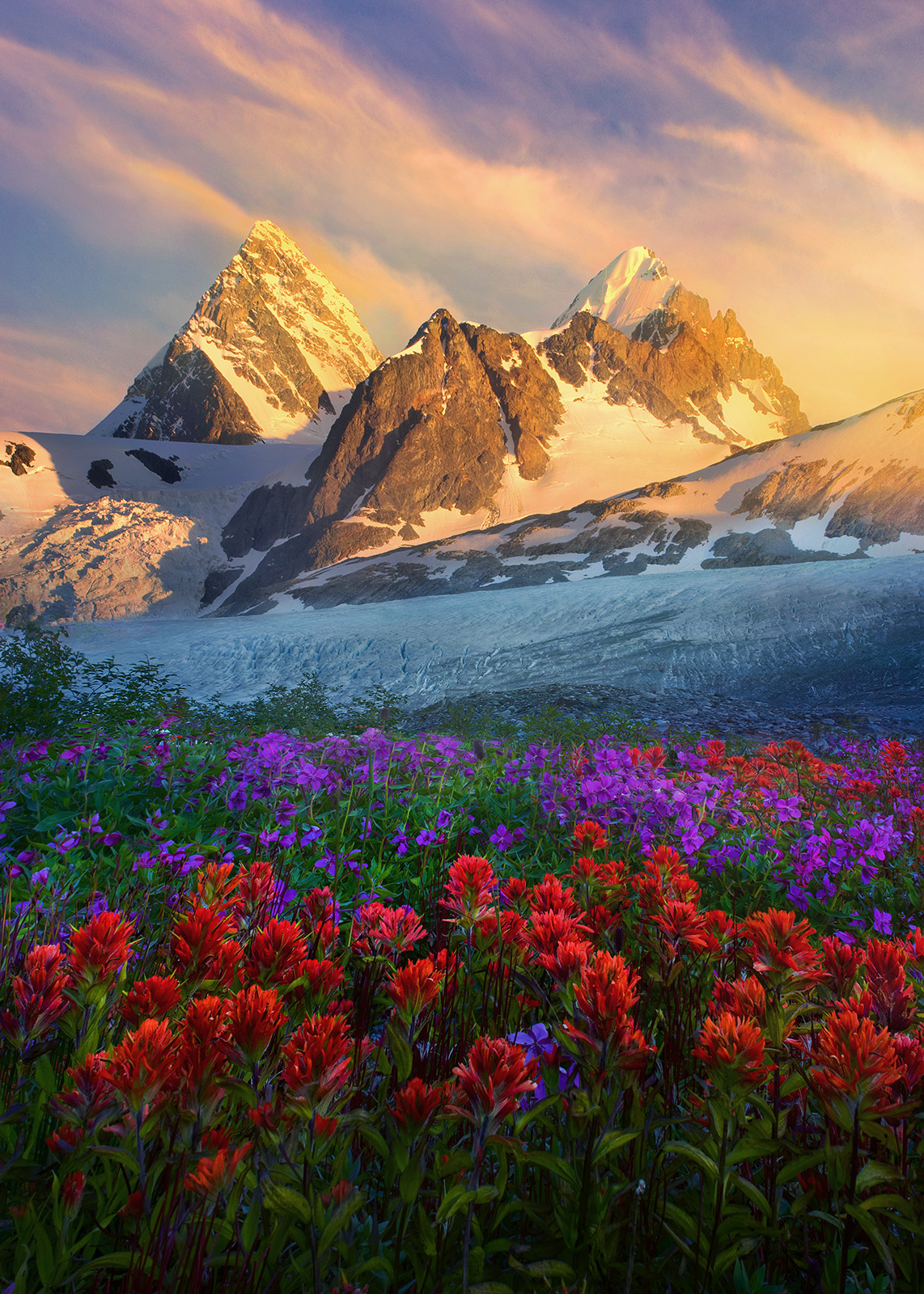 pacific range, british columbia, mountains, flowers, photo
