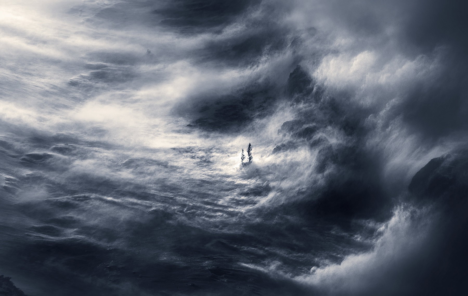 Lone, together, storm, winter, cold, violent, wind, snow, photo