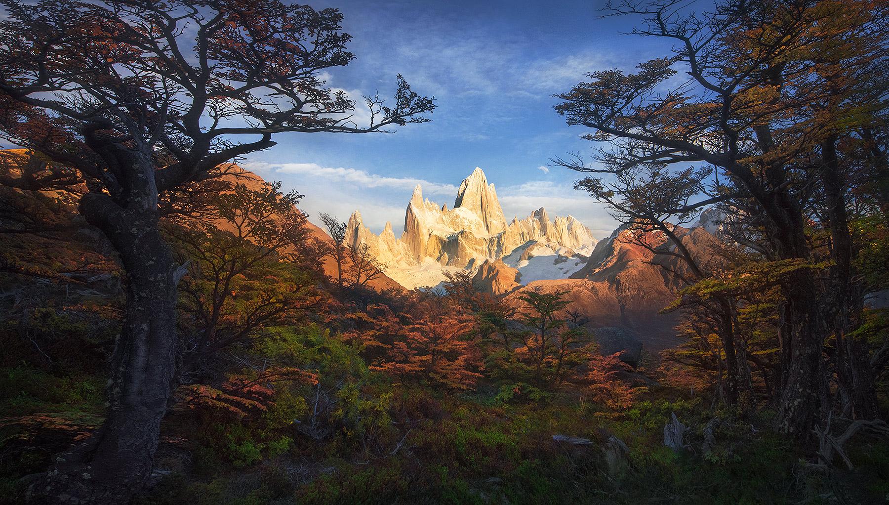 Fitz Roy,  Argentina, Lena, autumn, forest, photo