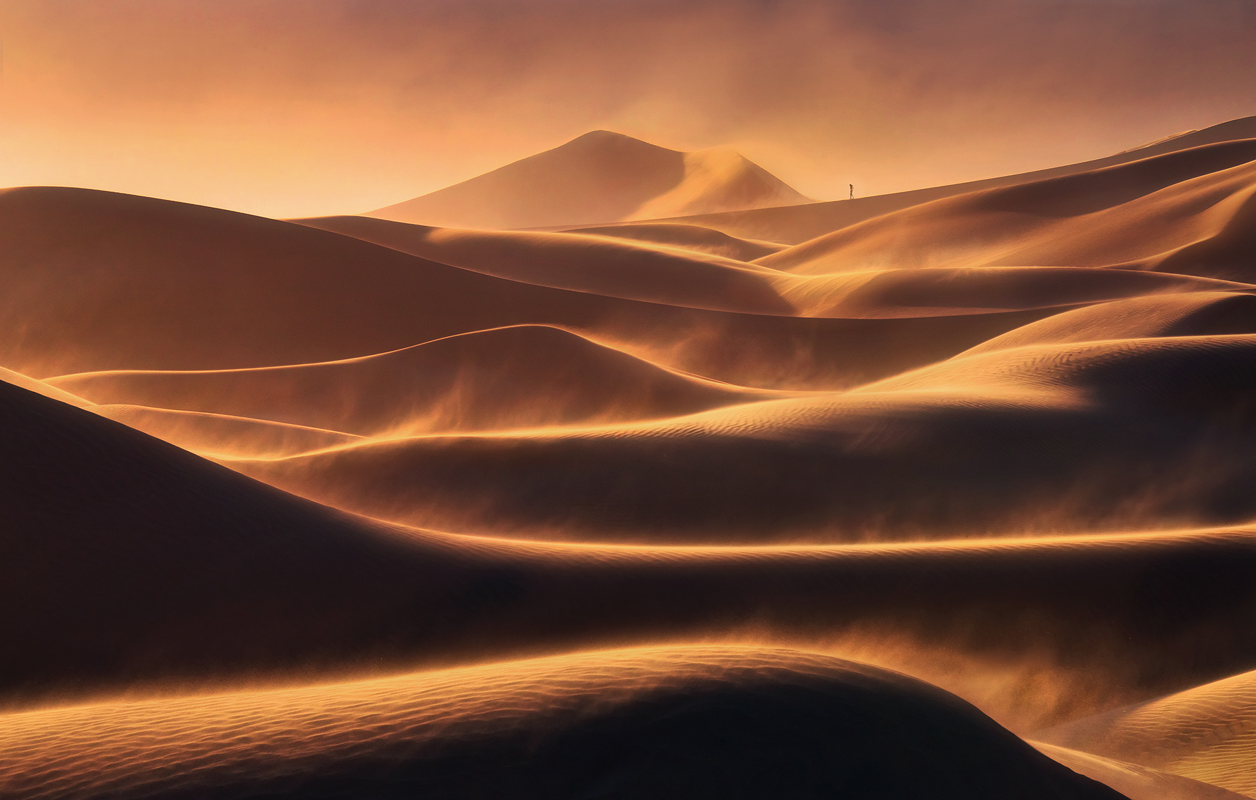 Dunes, sunset, death valley, lone, person, blowing, windstorm, wind, photo