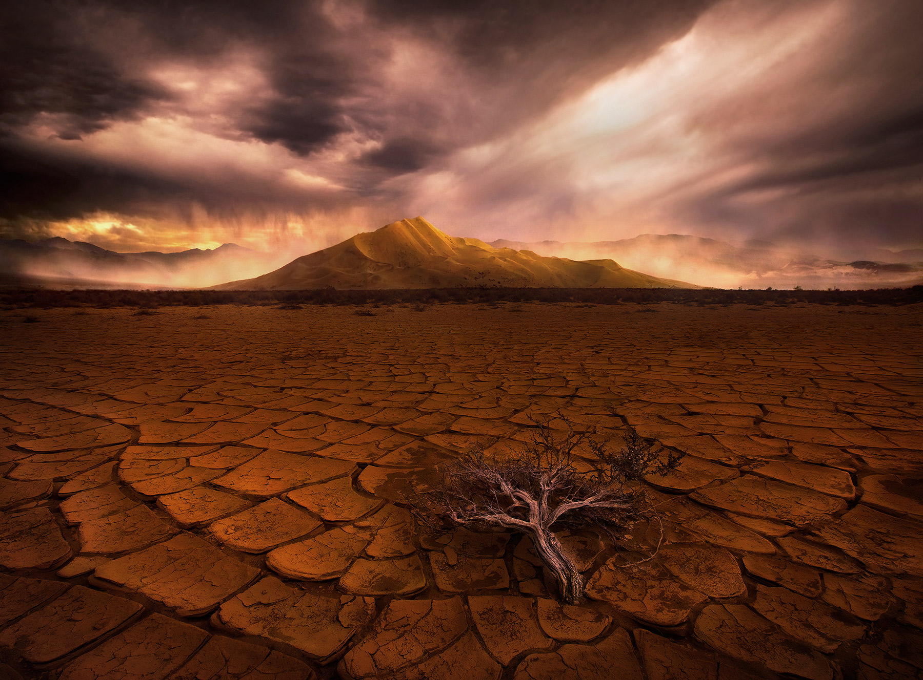 incredible, dunse, sandstorm, california, eureka valley, lone, sagebrush, cracked, desert, photo