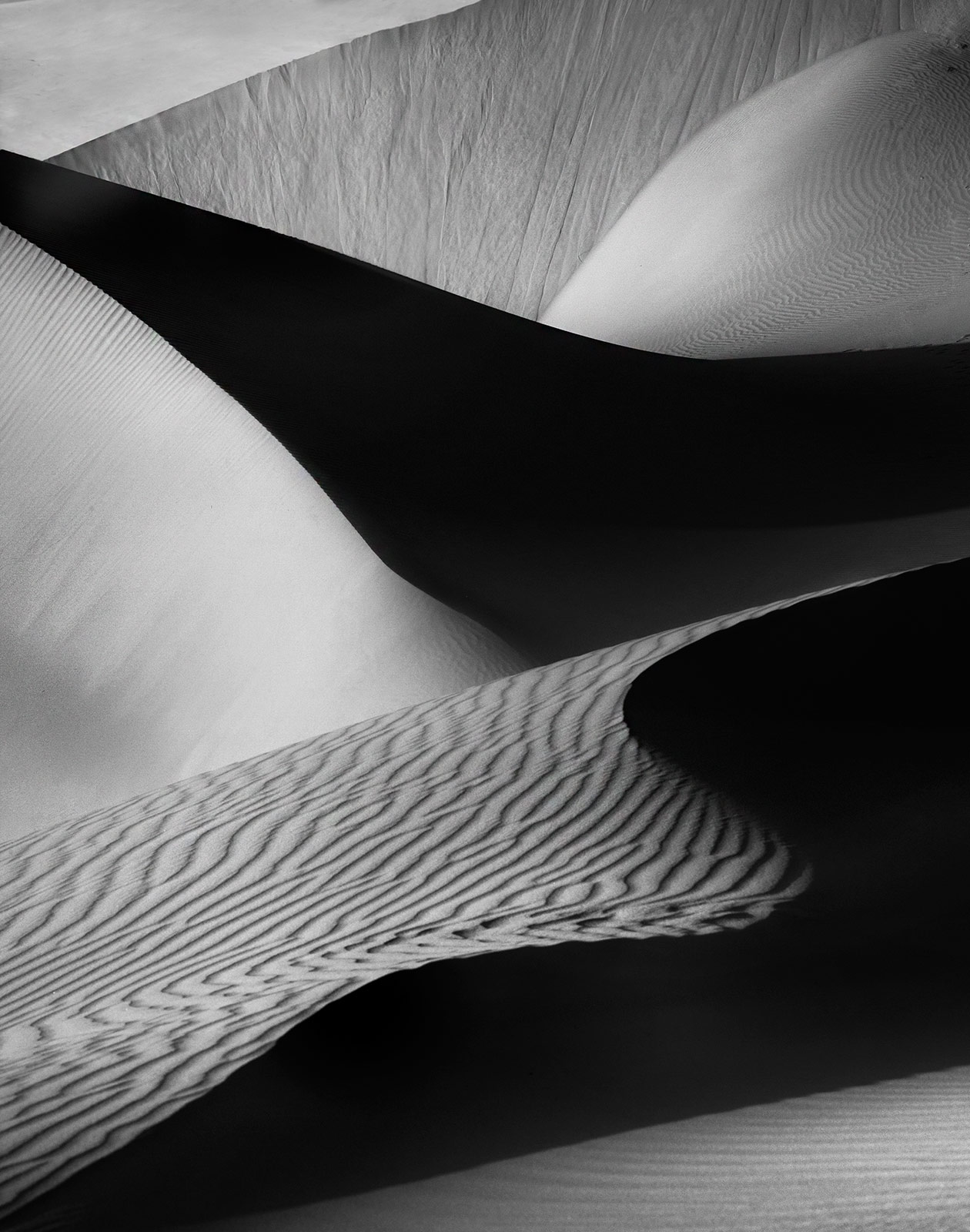United Arab Emirates, Dunes, photo