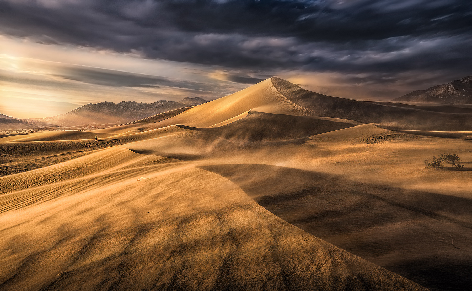 Mojave,