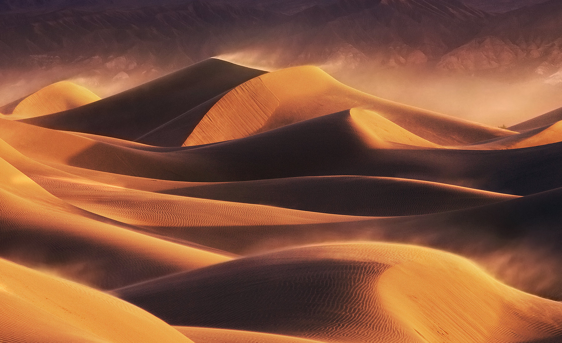 High winds and blowing sand grip the expanse of dunes on the floor of Death Valley illuminated by the light of sunrise.