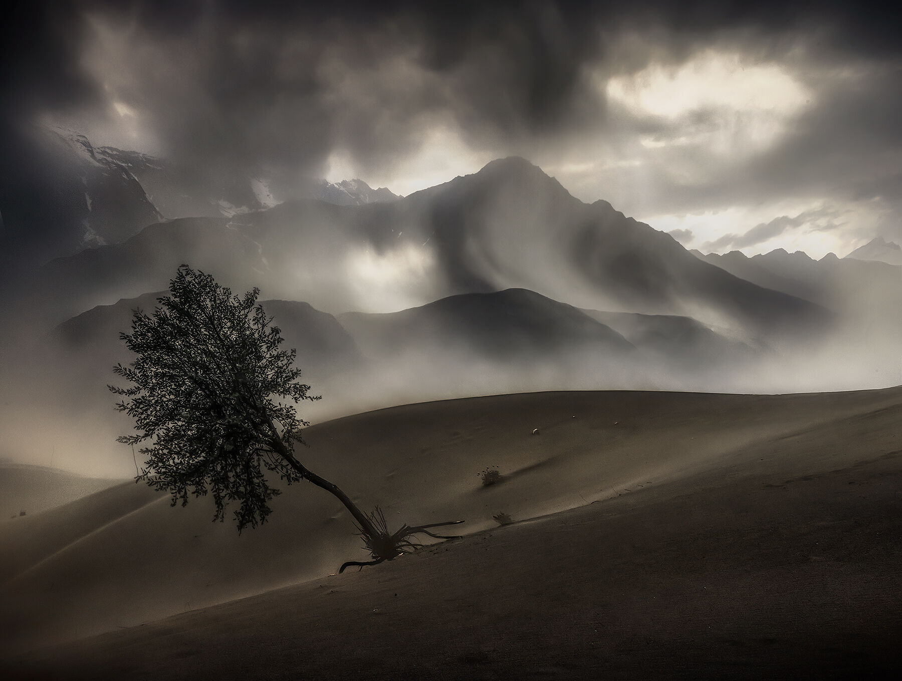 Light breaks through the storm over a lone tree on the dunes in a mountain valley within Northern Pakistan.