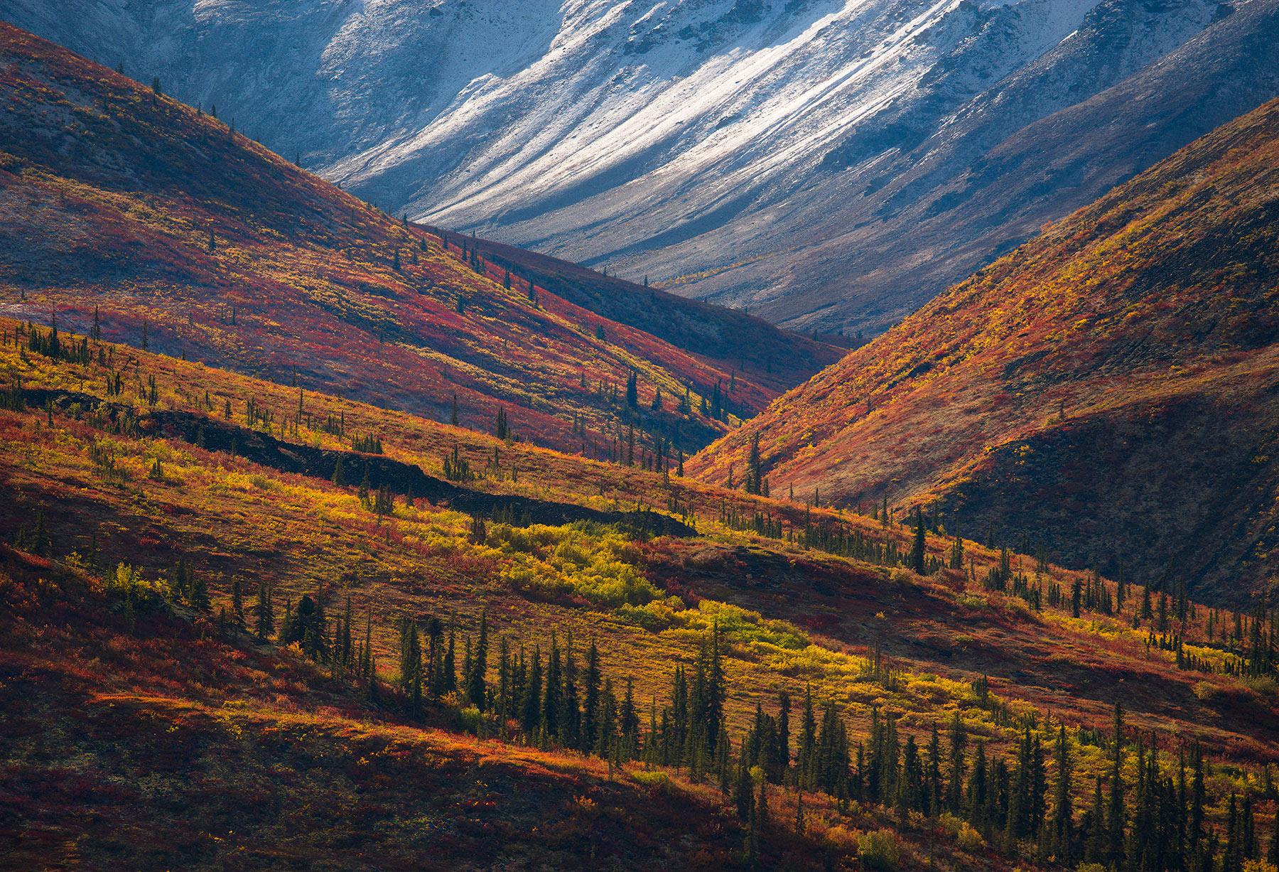 Ogilvie, Yukon, Arctic, Fall, photo