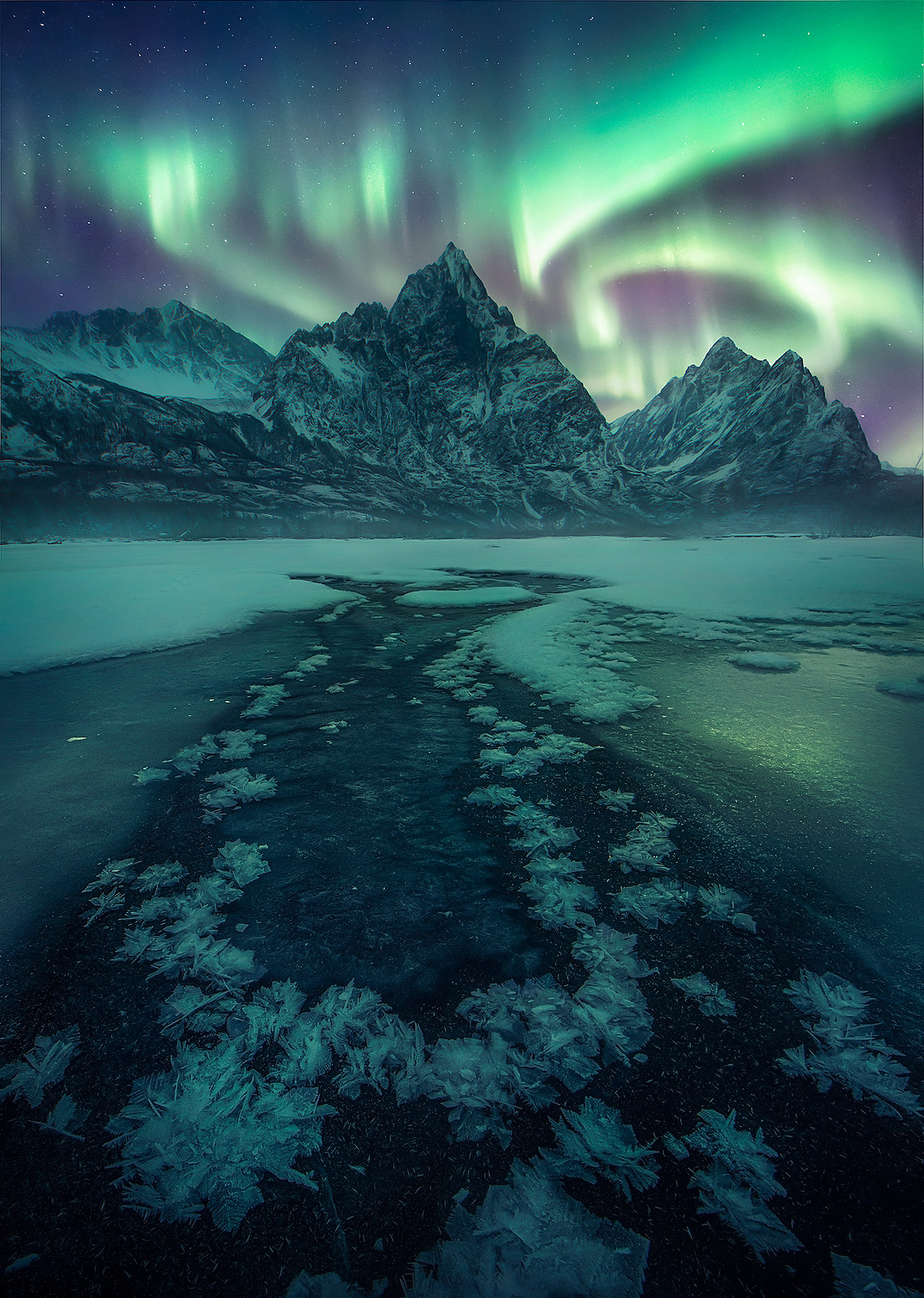 The aurora shown here dancing above Chugach peaks in mid-winter.  Hoar frost adorns the frozen river below.